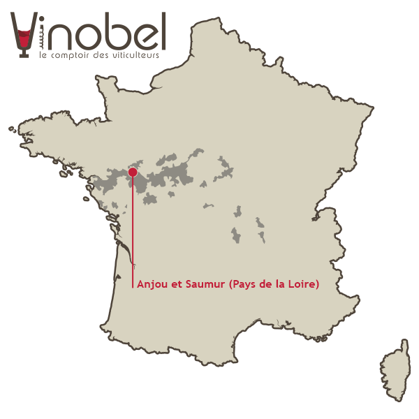 Carte du vignoble Anjou - Saumur